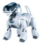 aido est le premier robot de compagnie, créé en 1999.