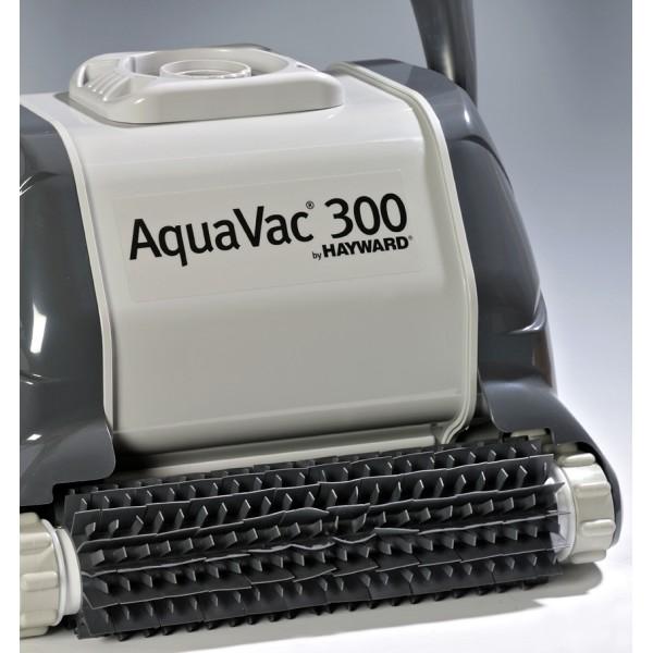 hayward-aquavac-300-brosses-picot